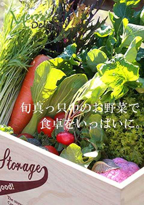 野菜セットのご案内